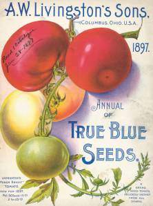 Annual catalog from 1897 for True Blue Seeds.